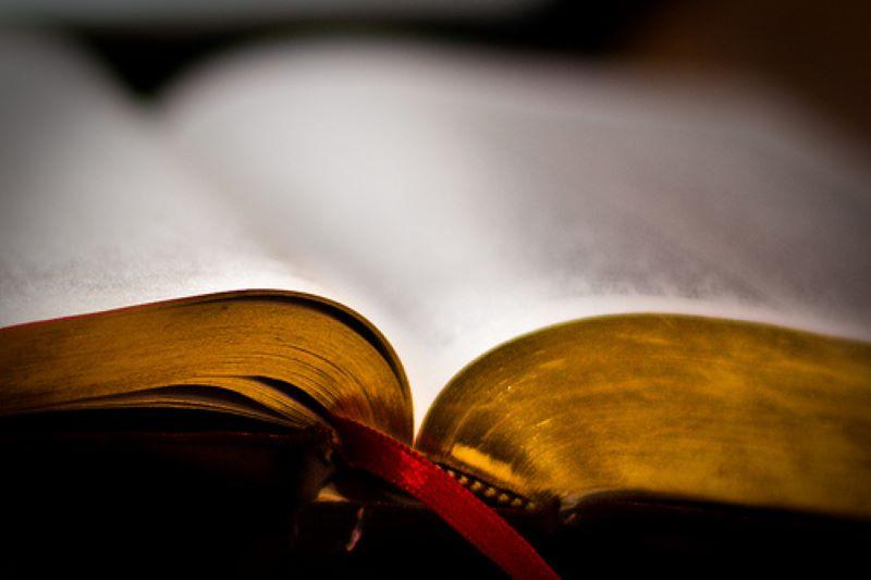 Հայերէնը կը զուաճանայ (33)